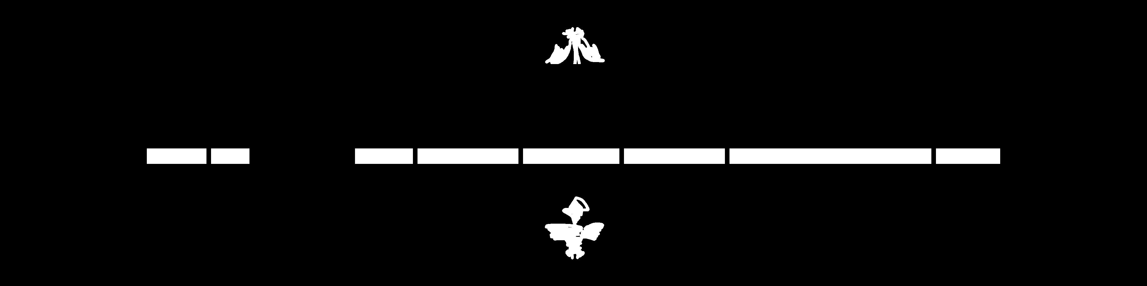 アクアヴィーナスシリーズ