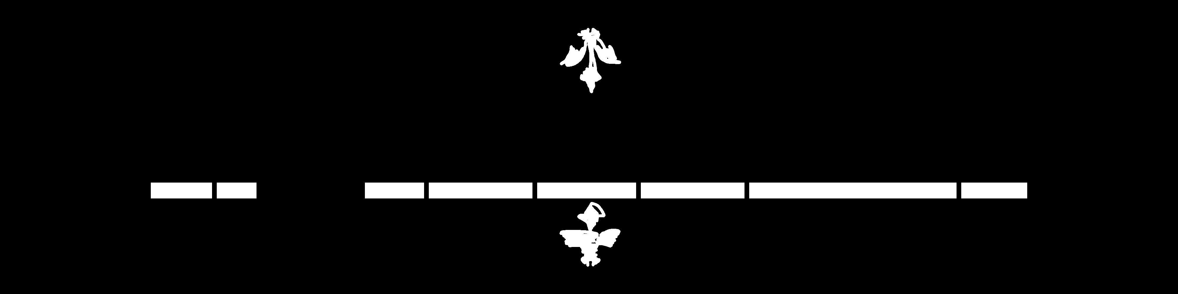 AVbanner